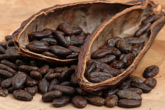 Nahrungsmittelindustrie Kaffeebohnen